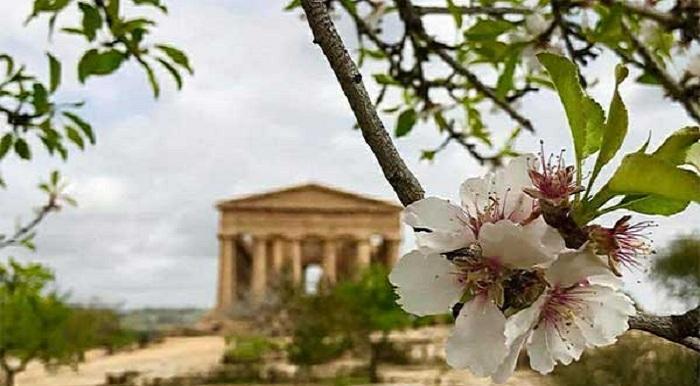 75° Sagra del Mandorlo in Fiore ad Agrigento28 febbraio – 8 marzo 2020