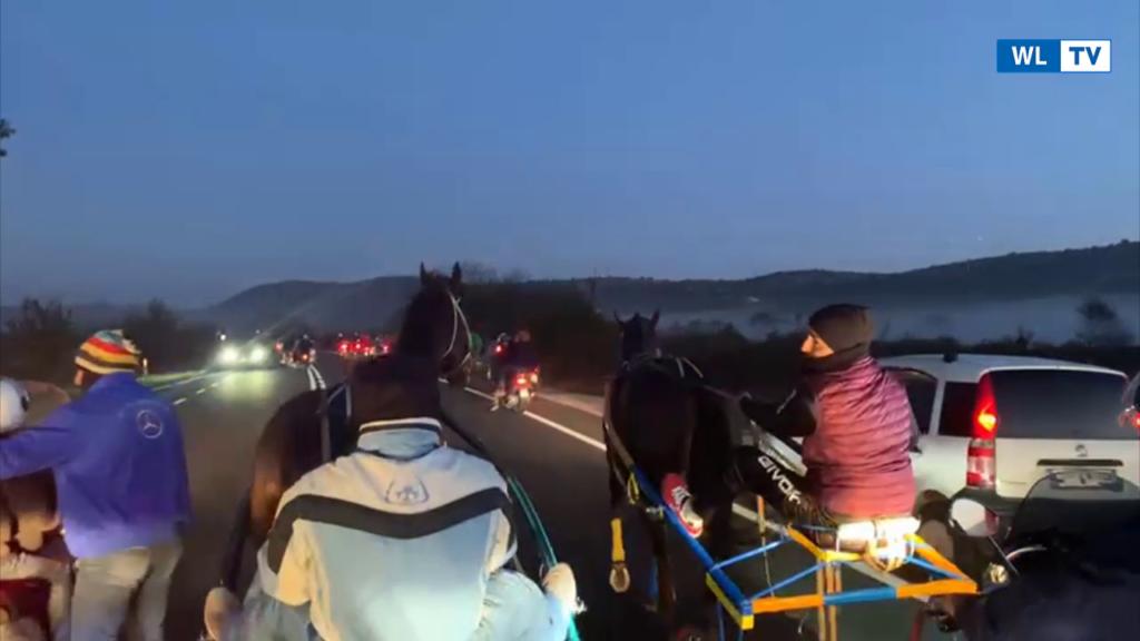 Corsa di cavalli clandestina tra i comuni di Noto e Palazzolo Acreide: scattano le denunce – Video
