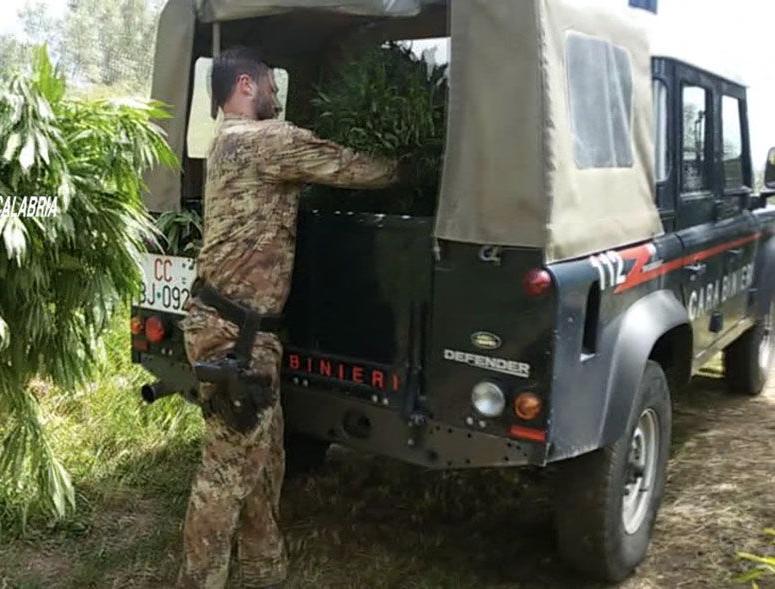 Camion marijuana in strade Vittoria, è maxisequestro dei carabinieri: arrestate 2 persone