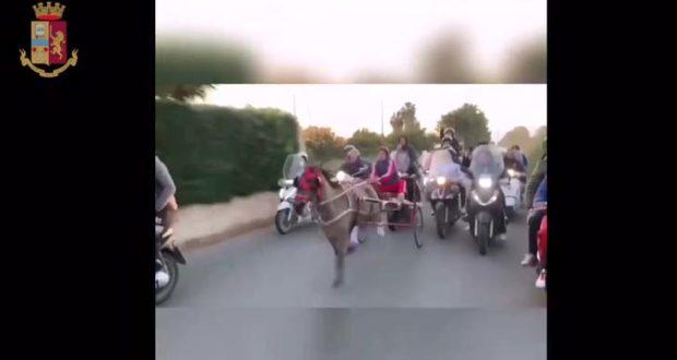 Noto, bloccata corsa clandestina di cavalli: denunciato un minore