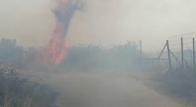 Siracusa – Ondata di caldo e sette fronti d'incendio in provincia