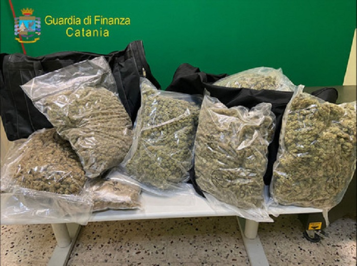Gdf Catania sequestra 37 kg marijuana, due arresti – Stupefacente del tipo 'amnesia' ad alto potenziale