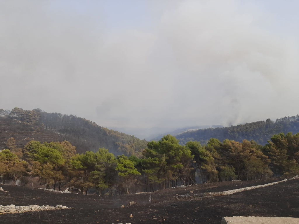 Incendio in contrada Calaforno nel Ragusano, paura per l'area archeologica: canadair in azione